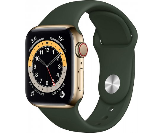 Apple Watch Series 6 GPS + Cellular, 40mm Gold Stainless Steel Case with Cyprus Green Sport Band - Regular